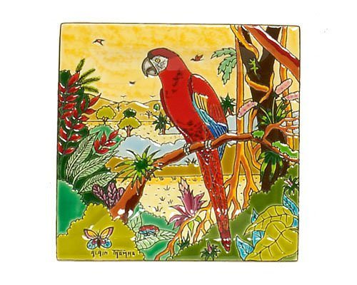 Vide-Poches Carré Standard (Oiseaux d'Amérique)